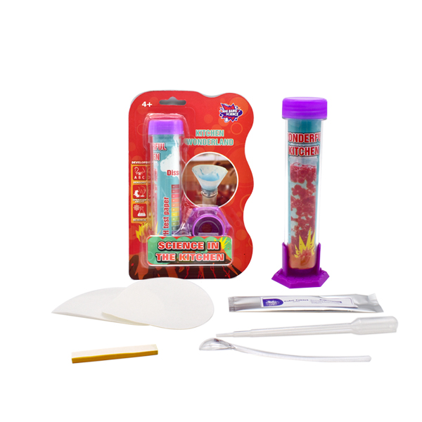 SCIENCE IN THE KITCHEN-test tube science lab kit